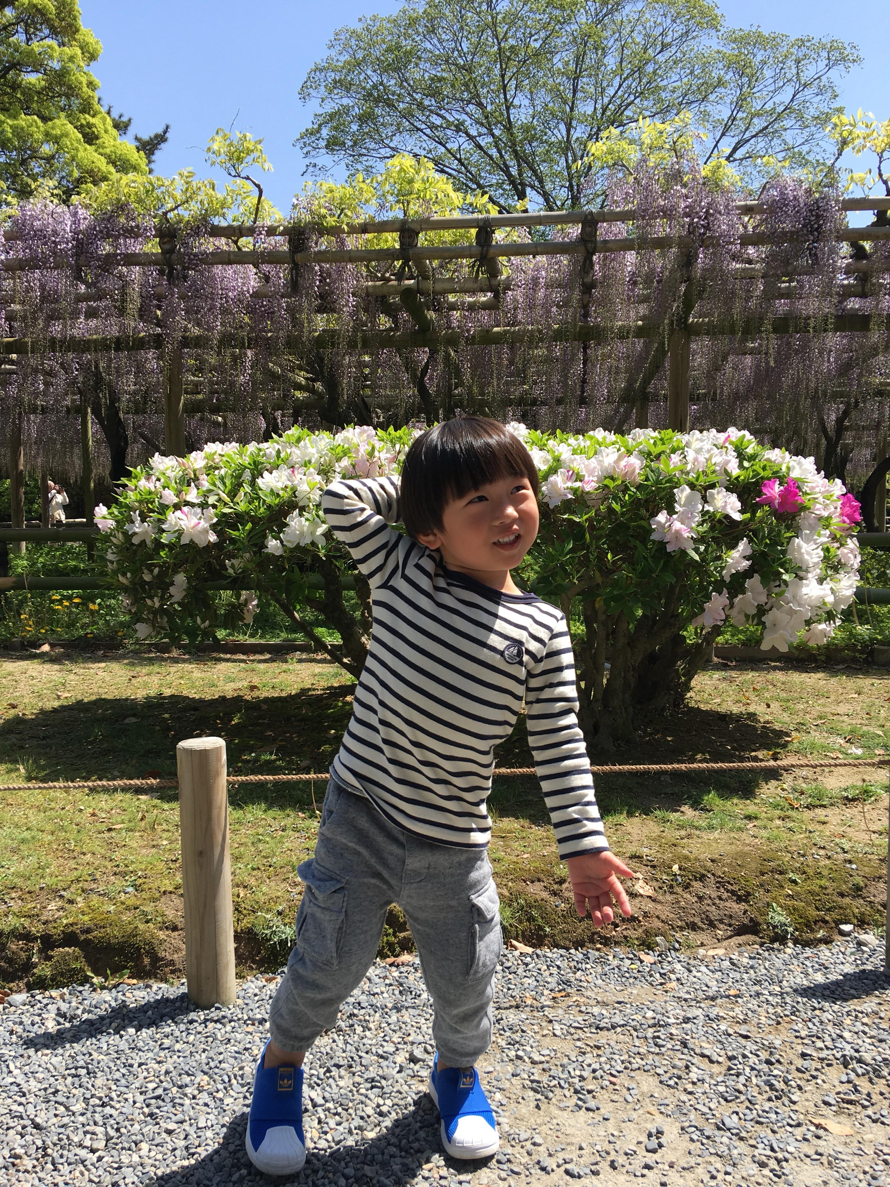 またまた京都!!